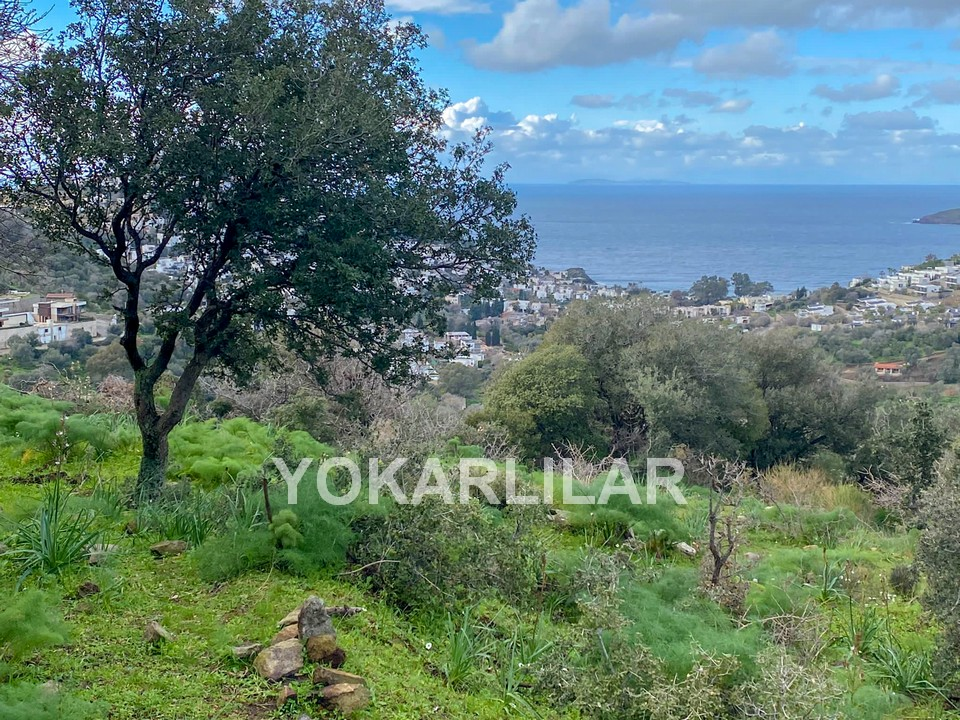 5.766 M² FARM LAND WITH A SEA VIEW FOR URGENT SALE