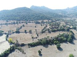 21925 M² LAND İN ORTAKENT FOR LUX RANCH FOR SALE