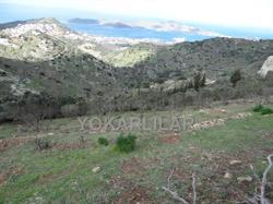 FOR SALE THE FARM LAND IN YALIKAVAK.