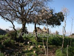 LAND FOR SALE IN BODRUM, YALIKAVAK. THIS LAND IS A RARE OPPORTUNITY NOT TO BE MISSED.