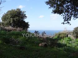 FOR SALE PLOT OF LAND WITHIN THE SEA VIEW IN YALIKAVAK - BODRUM