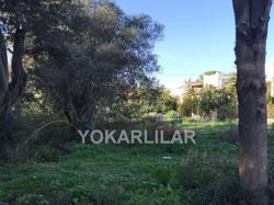 1.000 M² LAND JUST 20 M TO THE SEA IN GÖKÇEBEL-YALIKAVAK FOR SALE
