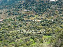 BARGAIN!LAND FOR MANSIONS CONSTRACTION FOR SALE