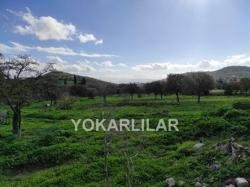 LAND IN YAHŞI-ORTAKENT FOR SALE