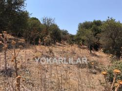 FOR URGENTLY SALE PLOT OF LAND  LOCATED IN BODRUM VILLAGE OF YAKA